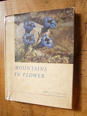 MOUNTAINS IN FLOWER: VARESCHI, Volkmar; KRAUSE, Ernst