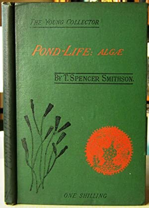 Pond-Life - Algae and Allied Forms (Young Collector series)