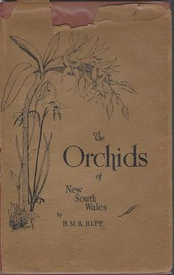 The Orchids of New South Wales