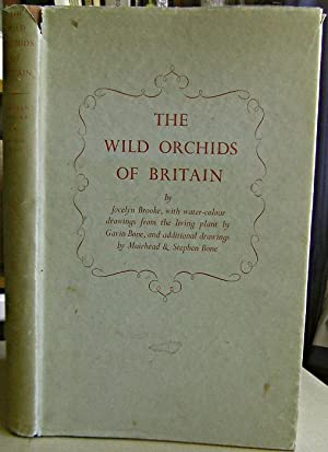 The Wild Orchids of Britain