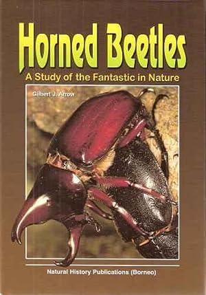 Horned Beetles - a study of the: Arrow, Gilbert J.