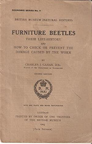 Furniture Beetles - their life history and how to check or prevent the damage caused by the worm