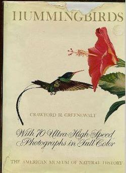 Hummingbirds: Greenewalt, Crawford