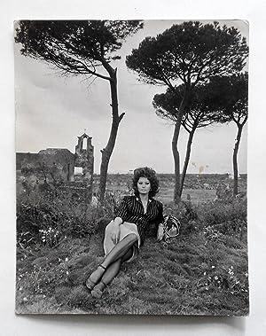 Sofia Loren Abebooks