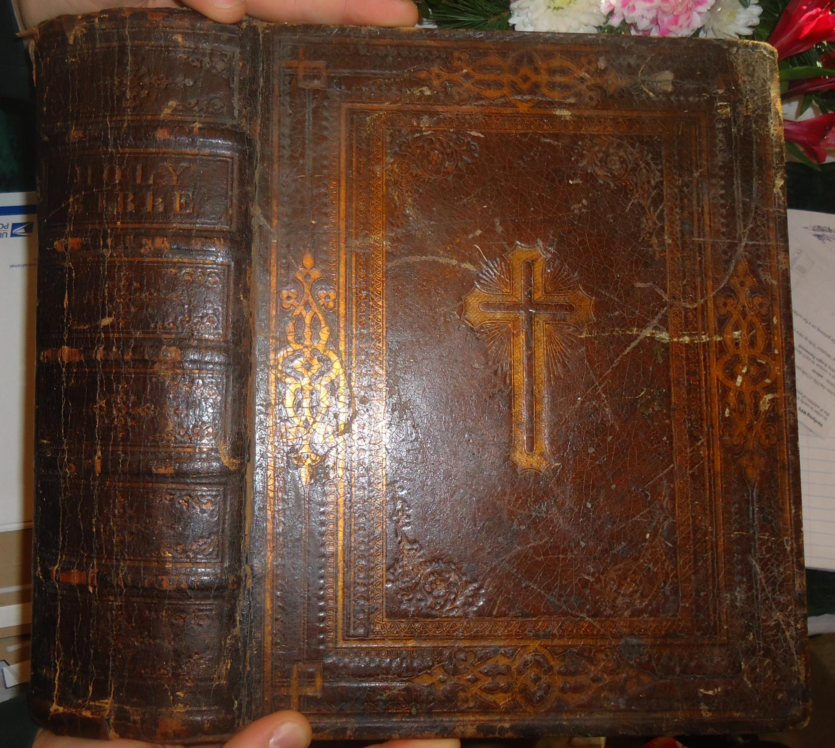 Holy Bible, / Translated from / The Latin Vulgate: / Diligently Compared with / the Hebrew, Greek, ...