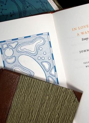 In Love with a Wanton - Essays: Updike, John