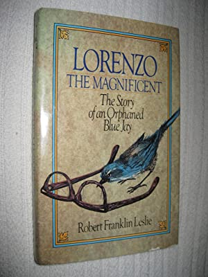 Lorenzo The Magnificent: The Story Of An Orphaned Blue Jay