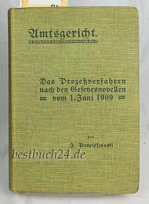 Amtsgericht. Das Prozeßverfahren nach den Gesetzesnovellen vom 1. Juni 1909 1. Aufl.: ...