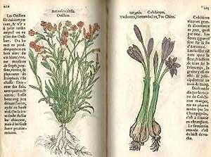 Histoire des Plantes de M. Leonhart Fuschsius, avec les noms Grecs, Latins & Fracoys, augment&...
