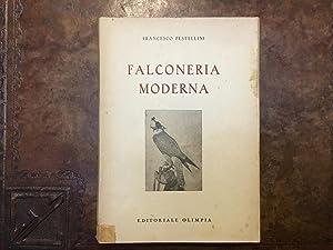 Falconeria moderna: Francesco Pestellini