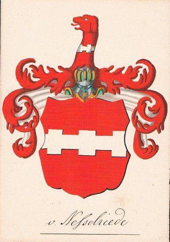 von Nesselriede Nesselrod Heraldik Wappen Aquarell Nesselried