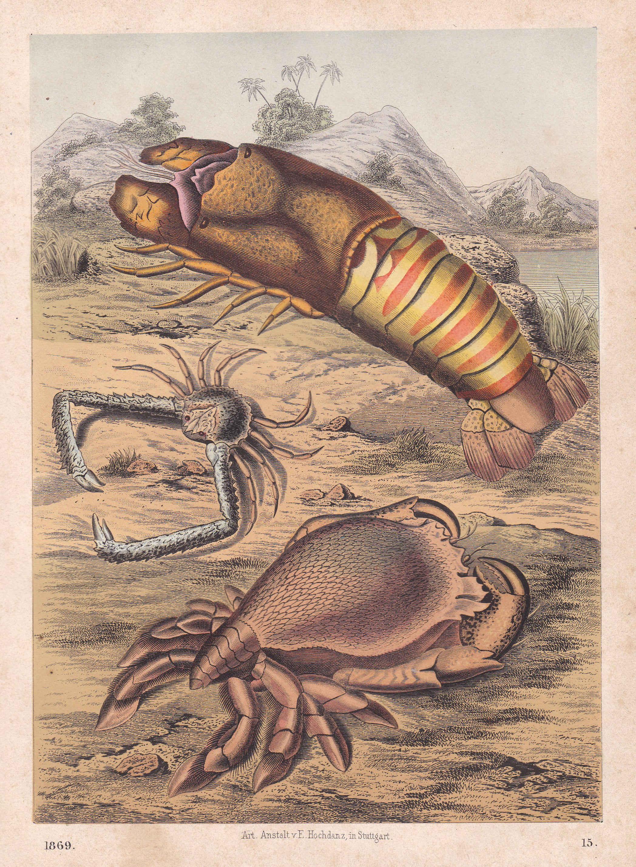 Skorpio Frau und Krebs Mann datieren