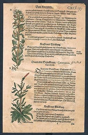 Antirrhinum herbal Lonicer Kreuterbuch original woodcut sheet