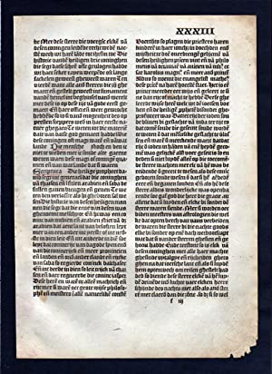 Blatt XXXIII Inkunabel Vita Christi Zwolle incunable Dutch Holland