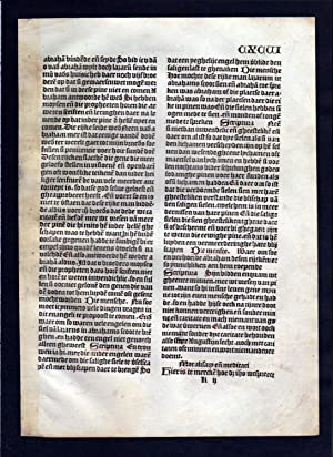 Blatt CXCVI Inkunabel Vita Christi Zwolle incunable Dutch Holland