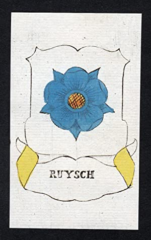 "Ruysch"" - Rachel Ruysch Wappen Adel coat: Artist/Künstler, Anonym:"