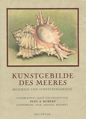 Kunstgebilde des Meeres - Muscheln und Schneckengehäuse