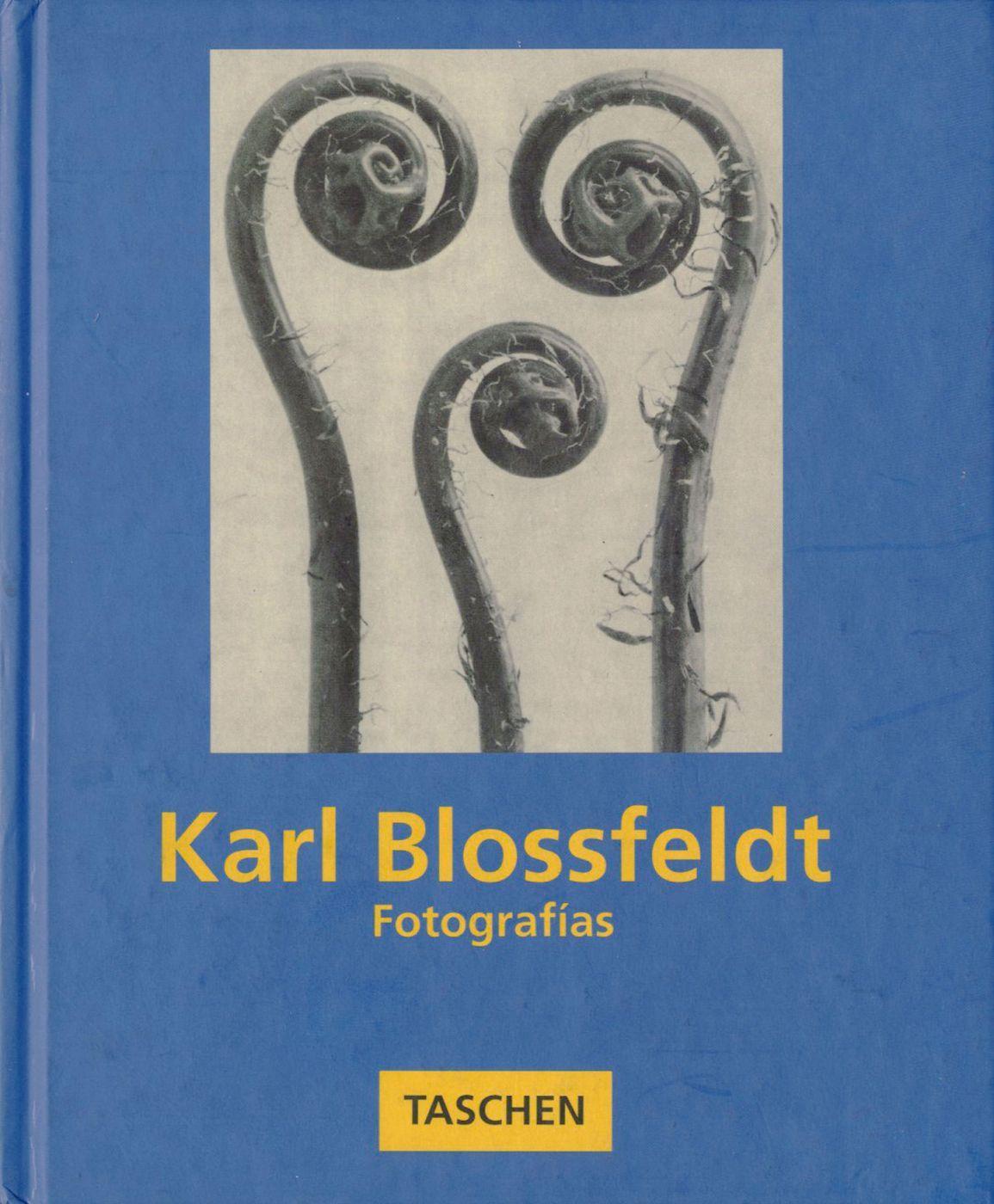 Karl Blossfeldt: Fotografías - BLOSSFELDT, Karl, SACHSSE, Rolf