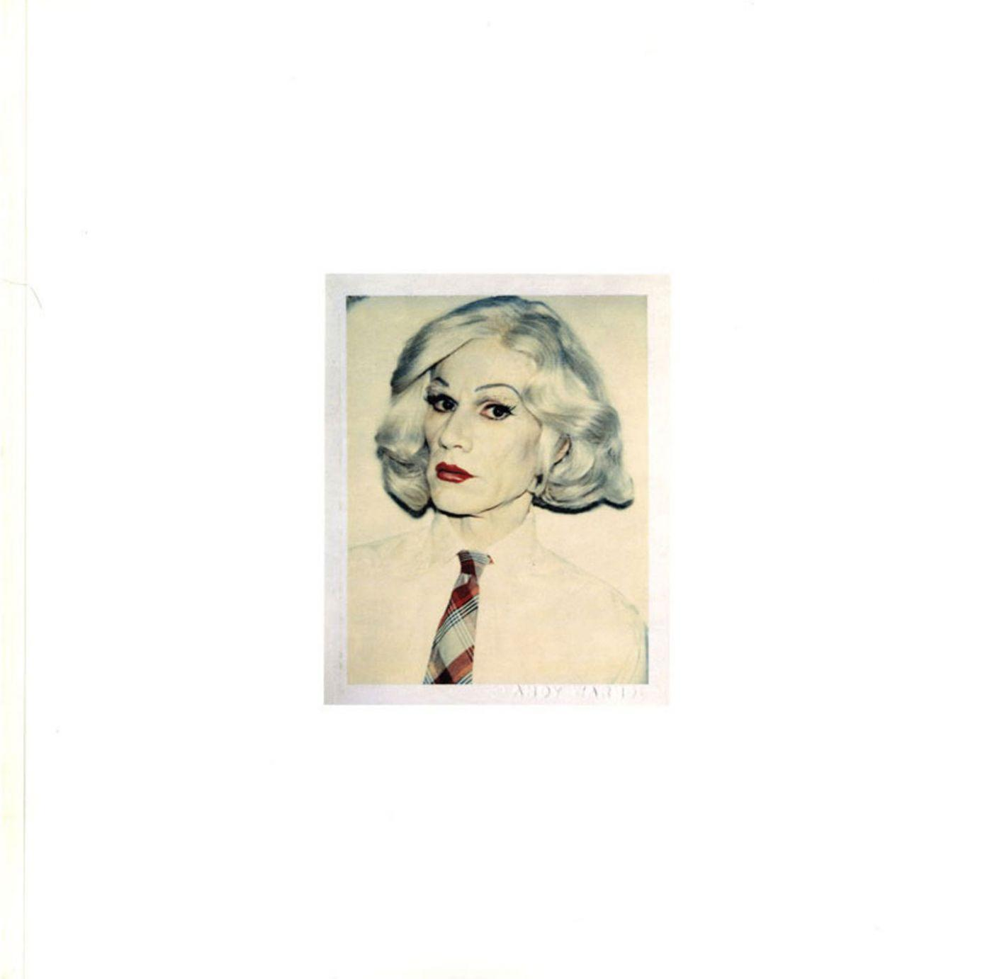the andy warhol photographic legacy program