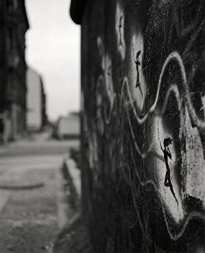 John Gossage: Berlin In the Time of: GOSSAGE, John, BADGER,