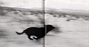 John Divola: Isolated Houses & Dogs Chasing My Car in the Desert, Limited Edition Publisher&#...