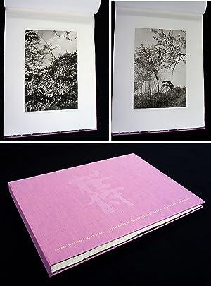 Lee Friedlander: Cherry Blossom Time in Japan: FRIEDLANDER, Lee