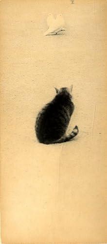 Masao Yamamoto: A Box of Ku, Limited: YAMAMOTO, Masao, AJIOKA,