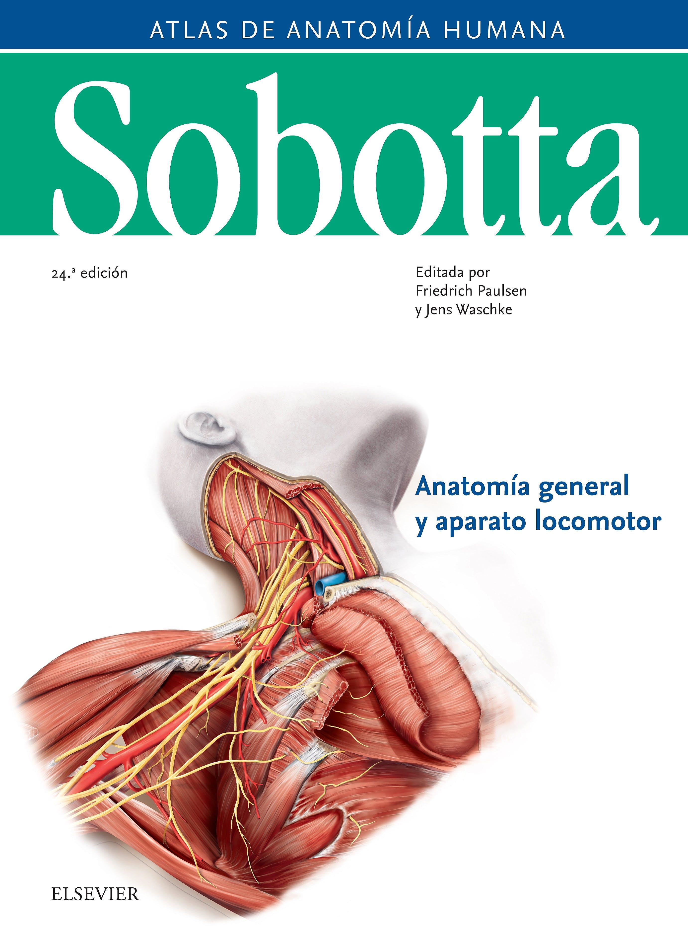 sobotta atlas anatomía humana - Iberlibro