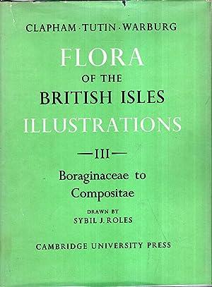 Flora of the Brirtish Isles Illustrations : Clapham, A R