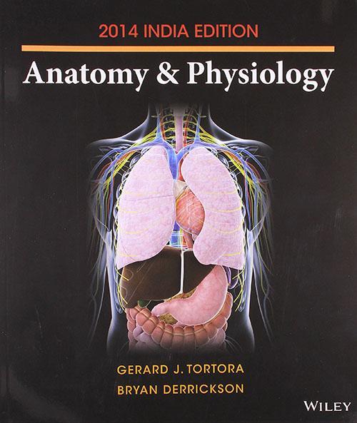 Tolle Anatomy And Physiology By Tortora Bilder - Menschliche ...