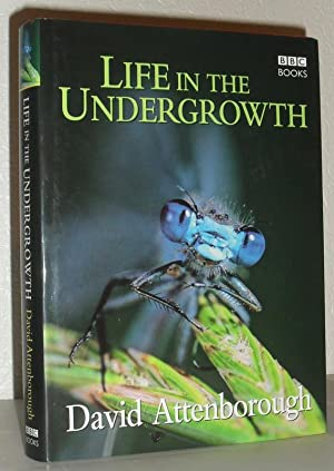 life in the undergrowth by david attenborough bbc books london 9780563522089 red cloth boards. Black Bedroom Furniture Sets. Home Design Ideas