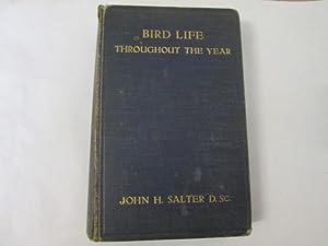 Bird Life Throughout the Year: John H Salter