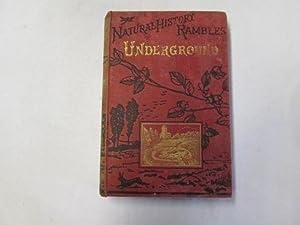 Underground (Natural history rambles): Taylor, John Ellor