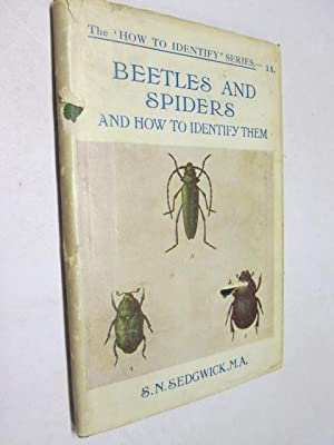 Common British Beetles And Spiders And How To Identify Them: Sedgwick, S. N.