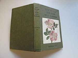 Wild Flowers: How To Find And Name: Fox, Thomas