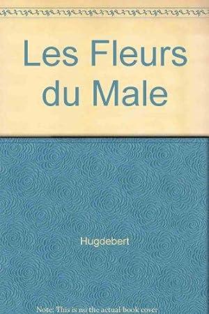 Männergeschichten: Hugdebert:
