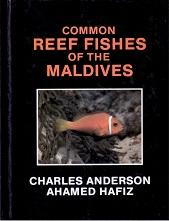 Common Reef Fishes of the Maldives.