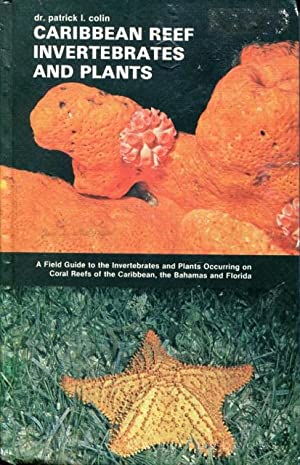 Caribbean Reef Invertebrates and Plants: A Field Guide to the Invertebrates and Plants Occuring o...