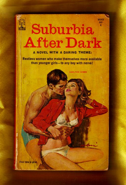 Suburbia After Dark / 60s pulp erotica fiction