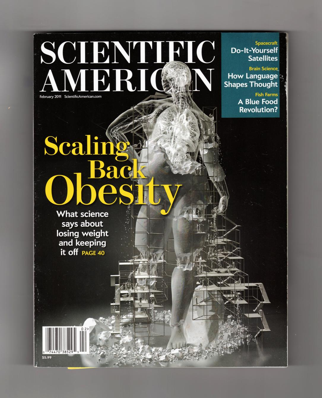 Scientific american february 2011 scaling back obesity do it scientific american february 2011 scaling back obesity do it yourself solutioingenieria Images