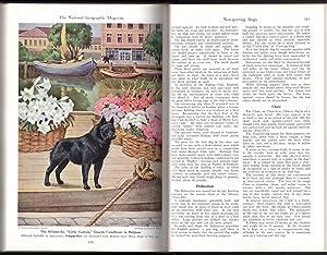 National Geographic One-Off Customized Hardbound Volume, 20s - 40s. Lena Larcom personalized.: ...
