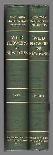 Wild Flowers of New York. New York State Museum Memoir 15. Two Volume Set: Homer D. House (State ...