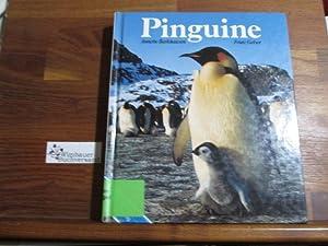 Pinguine: Barkhausen, Annette und