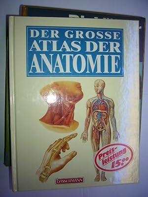 Der grosse Atlas der Anatomie von Lauen, Joachim :: Niedernhausen ...