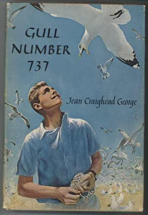 GULL NUMBER 737