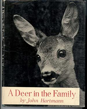 A DEER IN THE FAMILY