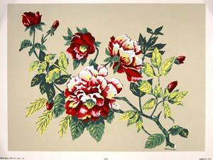 Color in Full Flower. (Hand-Made Prints) (1606-1607).