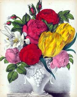 Still Life with Roses.: Botanical Lithographer.