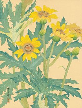 Sunflowers].: Zengetsu.