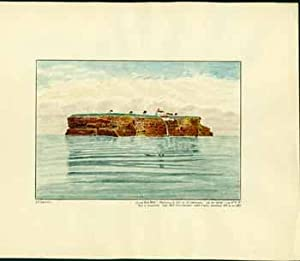 "Great Bird Rock"" Magdalen Is., Gulf of St. Lawrence. Lat. 47°50'42"" Long. 61°8'18&..."